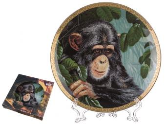 Тарелка настенная Шимпанзе
