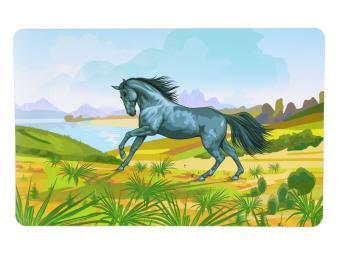 Салфетка ПВХ Лошадь Фото (12 штук)